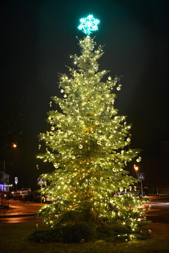 Mūsų dovana Balsiams - šventinės švieselės